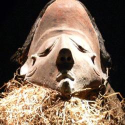 Petit massacre à la belge en colonie